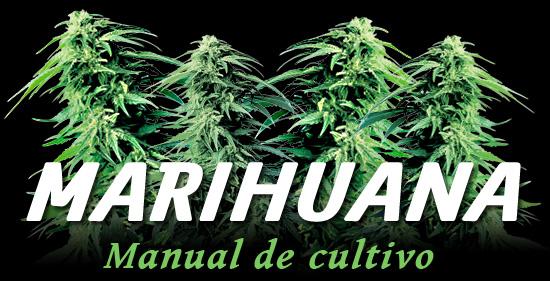 marihuana - manual de cultivo